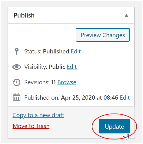 Publish Section - Update button.