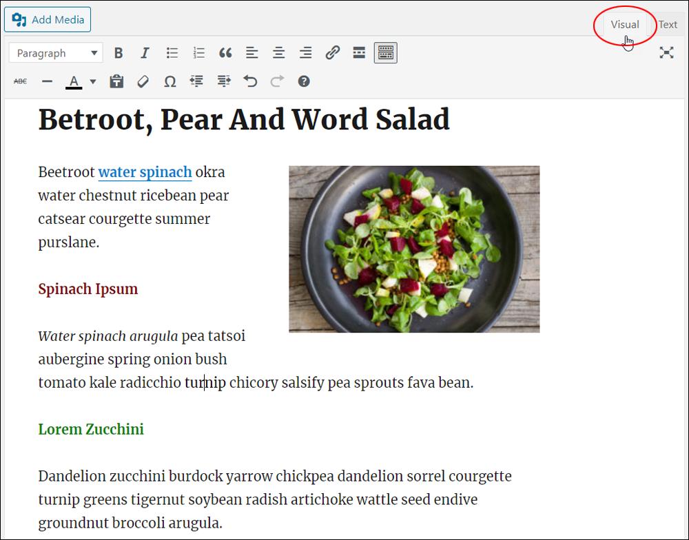 WordPress Classic Editor - Visual Tab