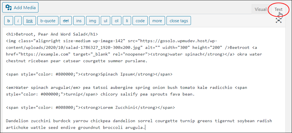 WordPress Classic Editor - Text Tab