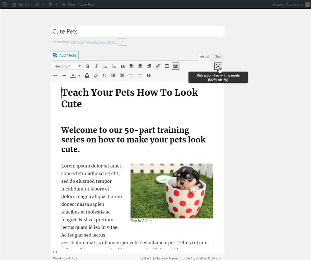 WordPress - Distraction-free writing mode.