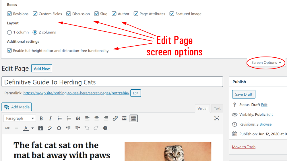 Edit Page screen options.