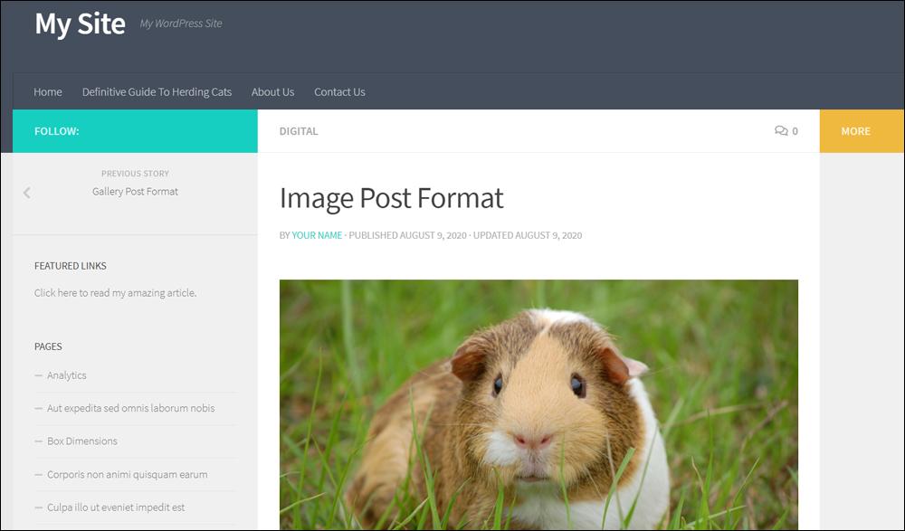 Image post format.
