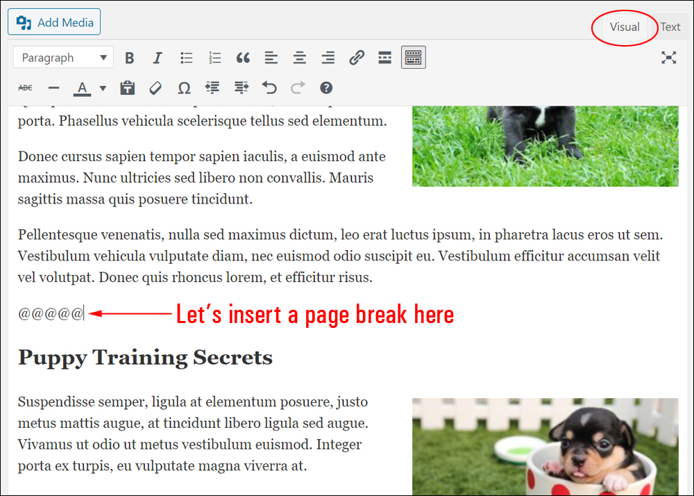 Using placeholder symbols to indicate a page break location.