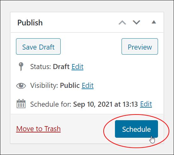 Publish Box - Schedule button.