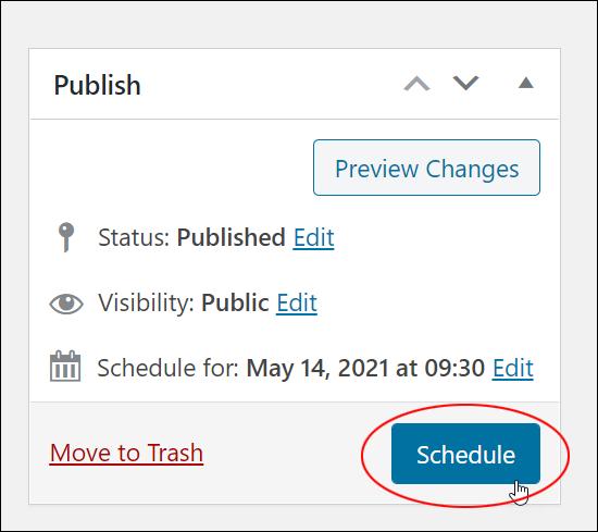 Publish box -Schedule Button