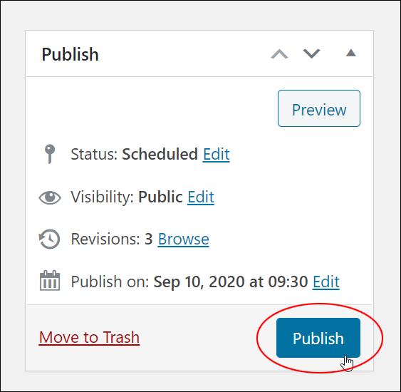 Publish box - Publish button.