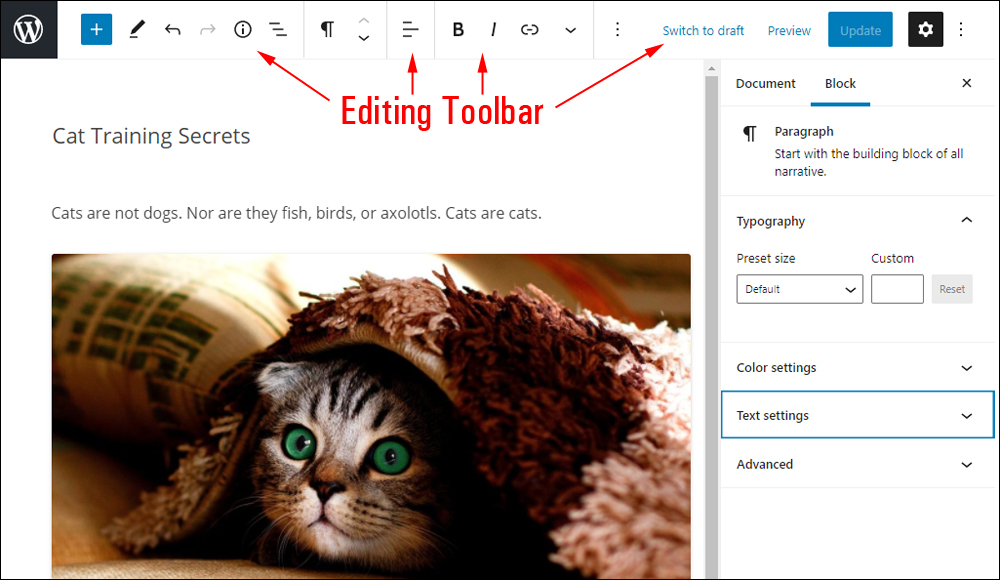 WordPress Block Editor - Editing Toolbar