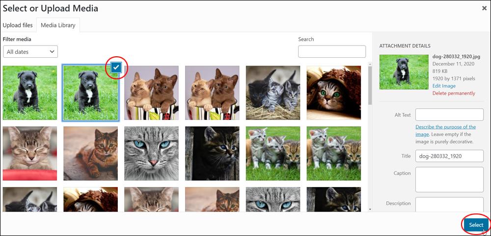 WordPress Media Library - Select Image.