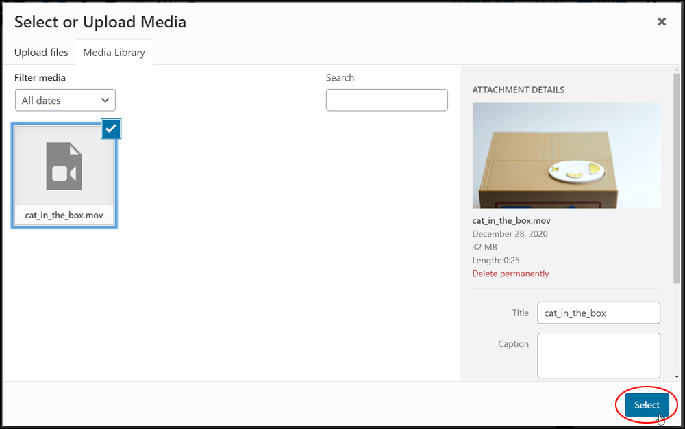 WordPress Media Library - Selecting a video.