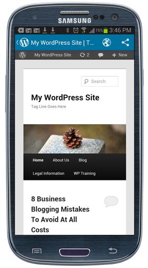 WordPress App -Preview site.