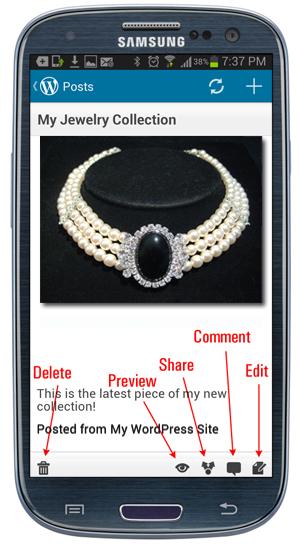 Mobile App - Post editing menu buttons.